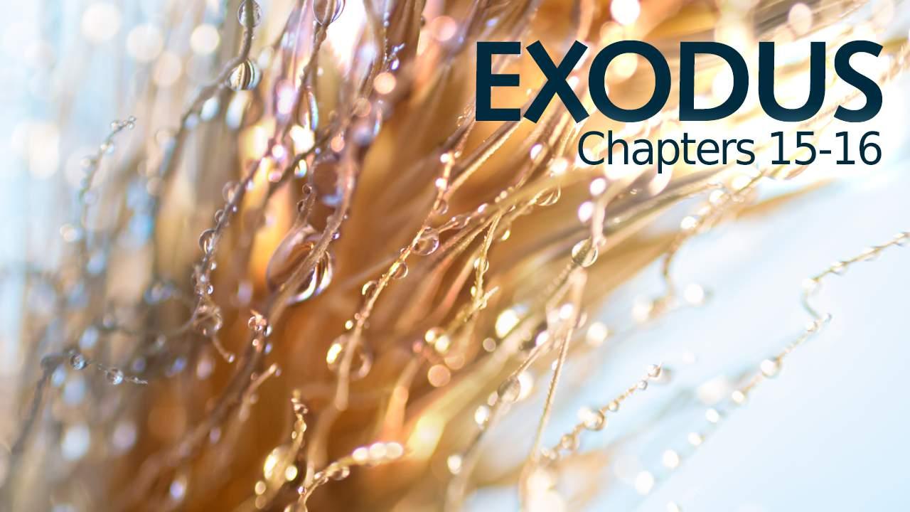 Exodus 15 16 Verse By Verse